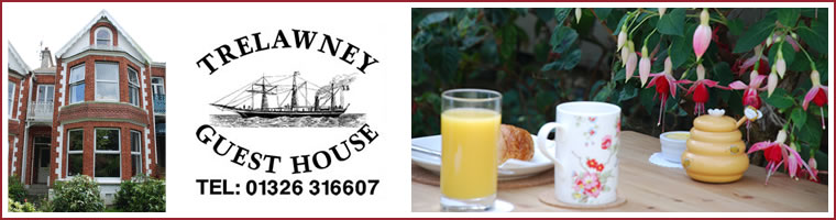 Falmouth Guest House - Breakfast at Trelawney Guest House, Falmouth, Cornwall
