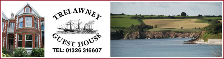 Trelawney Guest House Falmouth - bed and breakfast in Falmouth